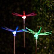 RGB led szolár lámpa szitakötő 11393B